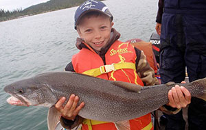 Nice Fish Junior